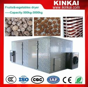 Used Commercial Garlic/Onion Dehydrator, Vegetable Drying Machine pictures & photos