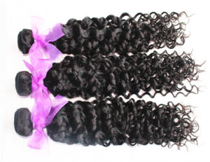Virgin Human Hair Jerry Curl Natural Color Brazilian Hair Weft pictures & photos