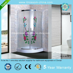 Hangzhou Xiaoshan Colorful Acid Glass Shower Enclosure Shower Cabin (BLS-9619) pictures & photos