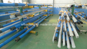 """9.14m Polished Rod 7""""Casing Screw Pump Rotor and Stator Glb200-14 pictures & photos"""