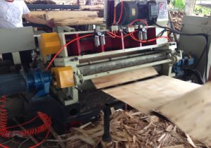 Servo 2 in 1 Spindleless Veneer Lathe pictures & photos
