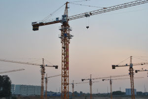 China Self-Raised Tower Crane Qtz50 (TC4810) B