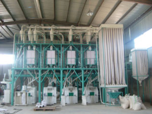 40tpd Complete Flour Mill Plant (6FTF-40) pictures & photos