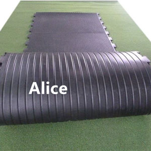 Anti Slip Rubber Mat/Stable Rubber Mat/Rubber Stable Mat (GM0421) pictures & photos