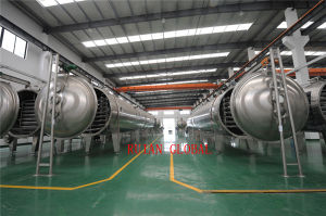 Vacuum Liquid Continuous Dryer for Salts of Fatty Acid (alcohol) pictures & photos