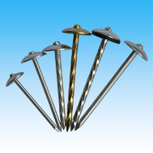 2′′-3′′ Zinc Plated Mushroom Head Roofing Nail pictures & photos