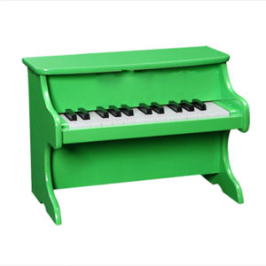 25-Key Toy Piano (TP25-GR) pictures & photos