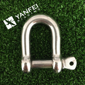 Stainless Steel 316 D Shackle pictures & photos