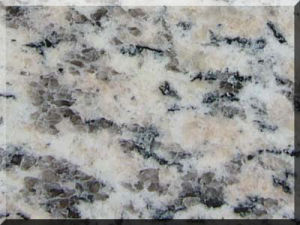 Tiger Skin White Granite Tile pictures & photos