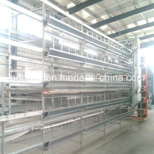 H Type Automatic Chicken Battery Cage Feeding System pictures & photos