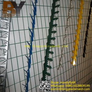 Anti Climb Wall Spike Used in Garden Fence pictures & photos