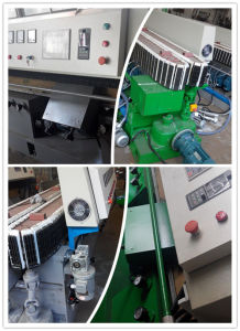 10 Motors Straight Line Glass Edging Machine pictures & photos