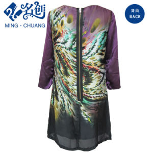 Fashion Mesh Printed Long Sleeve Dress pictures & photos