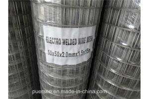 Low-Carbon Iron Wire Material and Welded Mesh Type Galvanized Spot Welded Wire Mesh in Rolls pictures & photos