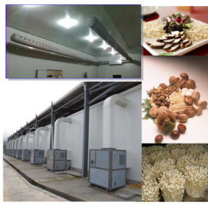 Climate Control Machine for Mushroom pictures & photos