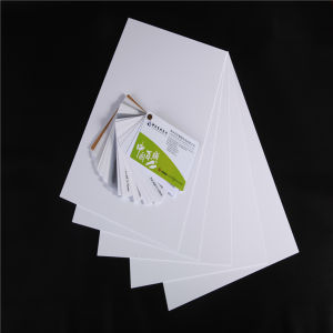 PVC White Plastical Card for ID Card pictures & photos