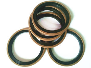 Copper Powder Filled PTFE + EPDM Rubber Gasket pictures & photos