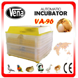 Hot Sale Inucubator 96 Eggs Micro-Computer Chick Incubatorfully Automatic Egg Incubator for Sale in pictures & photos