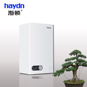 Wall Hung Gas Boiler