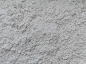 Food / Pharmaceutical Additives Talc Powder pictures & photos