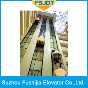 Good Sightseeing Panoramic Observation Passenger Villa Elevator with Vvvf Device pictures & photos
