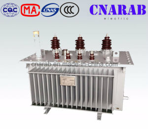 11kv Amorphous Alloy Oil Immersed Power Transformer (SBH15) pictures & photos