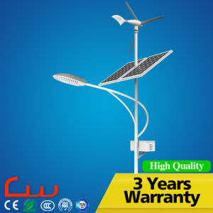 Double Panel 60W Wind Solar LED Street Light pictures & photos