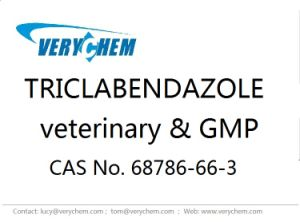 Pharmaceutical Triclabendazole CAS 68786-66-3 Veterinary Drug GMP Factory pictures & photos