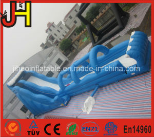 Giant Inflatable Water Slide, Inflatable Slide, Giant Slide Inflatable pictures & photos