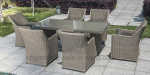 Modern French Garden Cane Dining Table Chair Set pictures & photos