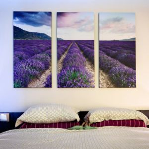 New Home Decor Beautiful Flower Scenery Custom Canvas pictures & photos
