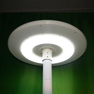 20W Solar Garden Light / Solar LED Street Light pictures & photos