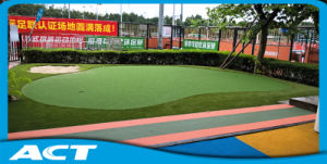 Artificial Indoor Putting Green Synthetic Golf Grass G13 pictures & photos