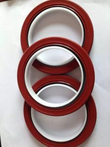 WTT Oil Seal/NBR Oil Seal/Double Lip Oil Seal pictures & photos