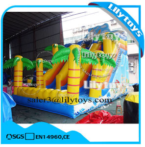 Giant Inflatable Slide for Sale / Inflatable Bouncing Slide for Rent pictures & photos