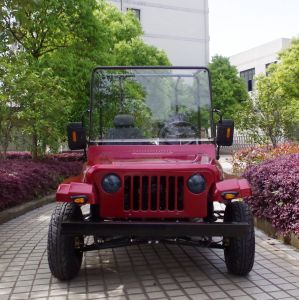 Hot Selling 150cc 200cc off Road Buggy/Mini Jeep for Adult pictures & photos