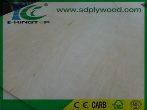 Birch Plywood Face D+ Grade for USA Market pictures & photos