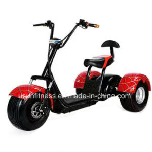 2017 Hot Sale China Tricycle Supplier pictures & photos