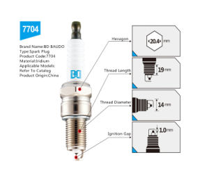 Bd 7704 Wholesale Price Spark Plug OEM Accepted Ngk Quality pictures & photos