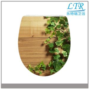 General Shaped Funny Best Selling Two Piece Wc Softclosing Toilet Seats Cover pictures & photos