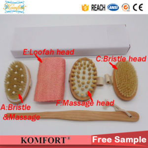 Detachable Handle Beauty SPA Bath Gift Set Exfoliating Dry Body Skin Boar Bristle Brush pictures & photos