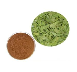 Natural Senna Leaf Extract Powder Plant Extract pictures & photos