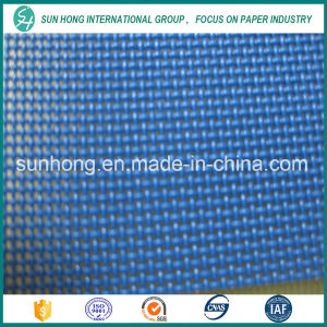 2 Shed Plain Weave Screen for Paper Machinery pictures & photos