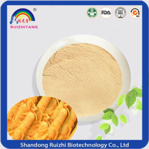 Herbal Extract Ginseng Extract for Health Suppliment pictures & photos