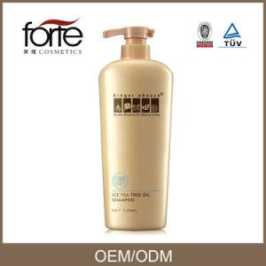 Ginger Tea Tree Oil Hair Shampoo (Cool feeling) Best Anti Dandruff Hair Shampoo pictures & photos