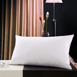 White Goose Down Pillow Europen Standard pictures & photos