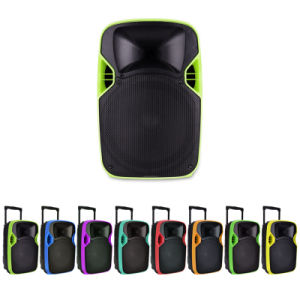 Good Quality 12 Inches Projection Speaker Box with Competitive Price pictures & photos