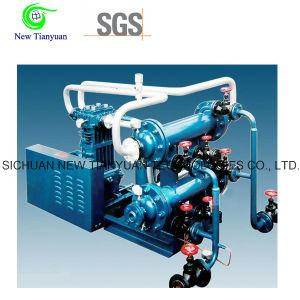 Easy Operation Liquefied Petroleum Gas Series LPG Gas Compressor pictures & photos