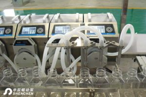 Glass Beverage Bottle Filling Machine Pump pictures & photos