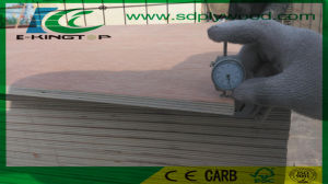 Bb/Bb Grade 15mm Bintangor Plywood by Inspected for Europe pictures & photos